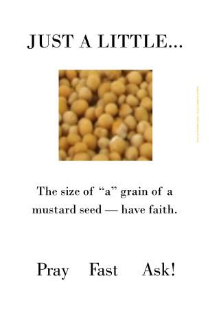 Mustard Seed Matt 17  20 By W. Calvin Anderson, M.Ed.