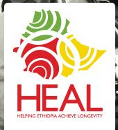 Heal eth logo